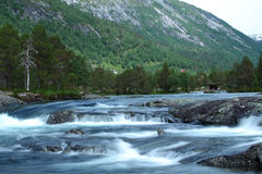 Wild river. In a forest in Norway Stock Photography