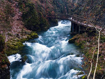 Wild river. Running through small canyon Royalty Free Stock Image