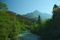 Wild river in the Alps (Soca / Isonzo) Royalty Free Stock Photo