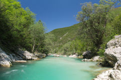 Wild river in the Alps (Soca / Isonzo) Royalty Free Stock Photos