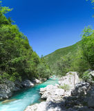 Wild river in the Alps (Soca / Isonzo) Stock Images