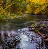 Wild river in autumnal colorful forest Royalty Free Stock Images