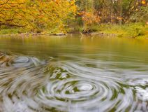 Wild river in autumnal colorful forest Royalty Free Stock Image