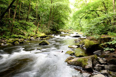 The Wild River Bode Stock Photo
