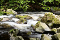 The Wild River Bode Royalty Free Stock Image