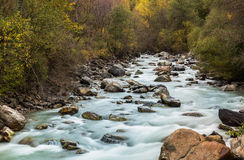 Wild river Etsch. Near Laas, South Tyrol Royalty Free Stock Photography