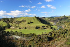 Wild river with green hills in New Zealand. Meandering river in beautiful countryside of New Zealand lined by forrest and hills stock images