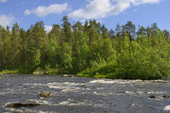 Wild River. Northern landscape Stock Images