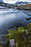 Wild River in Norway Royalty Free Stock Photos