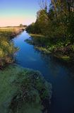 Wild river in the park. National park 'ujscie warty' in kostrzyn poland Stock Photos