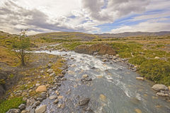 Wild River in the Patagonian Highlands Royalty Free Stock Photo