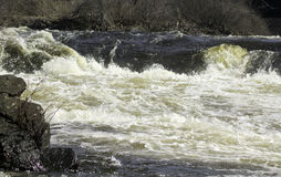 Wild River Rapids. Spring melts swell the Grasse River causing fast waters to roll down stream Royalty Free Stock Photo