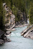 Wild river in the rocky mountains - Canada Royalty Free Stock Photo