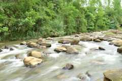 Wild river Stock Photos