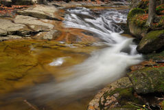 Wild river stream with cascade in autumn Stock Photos