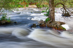 Wild river Swedish cascades Royalty Free Stock Image