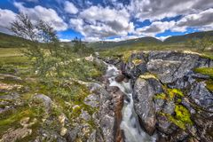 Wild river with Waterfall in Hardangervidda. National Park Royalty Free Stock Images