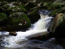 A wild river Stock Images