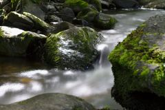 Wild River in the woods of the Ravennaschlucht royalty free stock photo