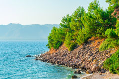 Wild rocky beach of  Aegean Sea Stock Photos