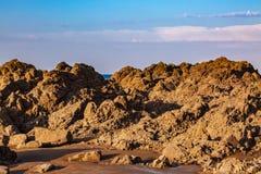 Wild Rocky Beach stock photography