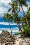 Wild, rocky beach on tropical island, Koh Samui, Thailand. Wild, rocky beach and coconut palm trees, tropical island, Koh Samui, Thailand Stock Photos