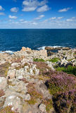 Wild rocky coast in vertical landscape Royalty Free Stock Photos