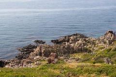 Wild rocky coast on western Sweden. Kullaberg - Wild rocky coast on western Sweden Royalty Free Stock Images
