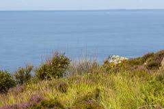 Wild rocky coast on western Sweden. Kullaberg - Wild rocky coast on western Sweden Stock Image