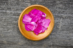 Wild rose brier petal in wooden plate Stock Images