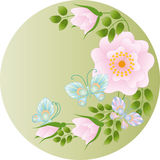 Wild Rose and Butterflies Royalty Free Stock Photo