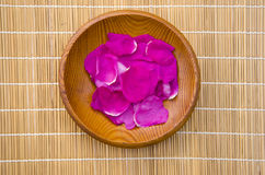 Wild rose eglantine petals in wooden  plate. Wild rose eglantine fresh medical petals in wooden  plate Royalty Free Stock Photo
