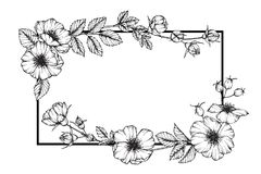 Wild rose flower frame flower drawing and sketch. Royalty Free Stock Photo