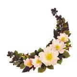 Wild rose flowers round arrangement Stock Images