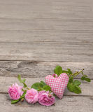 Wild rose and heart Royalty Free Stock Photos