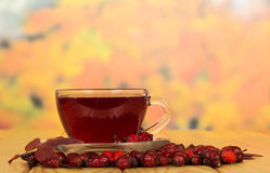 Wild rose hips and cup tea on background autumn leaves. Stock Photos
