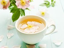 Wild rose tea. Wild dog rose tea and flowers on wooden background. Shallow dof royalty free stock photography