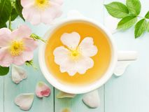 Wild rose tea. Wild dog rose tea and flowers on wooden background. Shallow dof stock photo