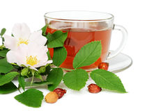 Wild rose tea with flowers Stock Images