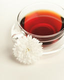 Wild rose tea in the glass cup Stock Photography