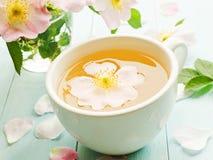 Wild rose tea. Wild dog rose tea and flowers on wooden background. Shallow dof stock photos