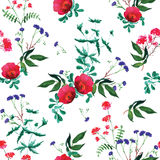 Wild rose watercolor seamless vector print Royalty Free Stock Images
