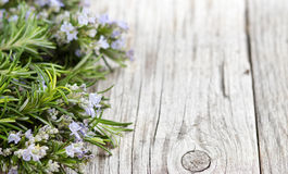 Wild rosemary with flowers on the old wooden table Royalty Free Stock Image