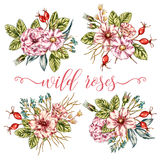 Wild Roses Bouquets Collection Royalty Free Stock Photography