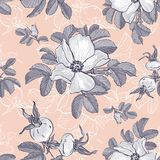 Wild Roses and Rosehips pattern, Flower background Floral pattern, Vector. Wild Roses and Rosehips pattern, Flower background Floral pattern, Trendy monochrome Stock Images