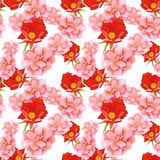 Wild Roses Seamless Pattern Royalty Free Stock Photos
