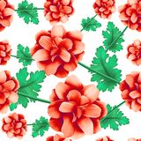 Wild Roses Seamless Pattern Stock Images