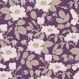 Wild roses - seamless pattern Royalty Free Stock Image