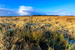 Wild rural landscape lit by morning sun Royalty Free Stock Photography