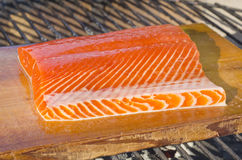 Wild Salmon on Cedar Plank Over Barbecue Stock Photography